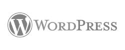 Wordpress Freelance Argentina